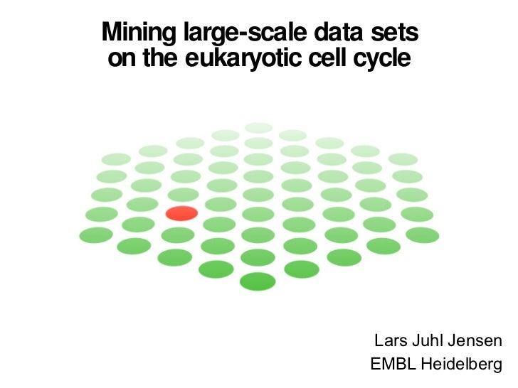 Mining large-scale data sets on the eukaryotic cell cycle Lars Juhl Jensen EMBL Heidelberg