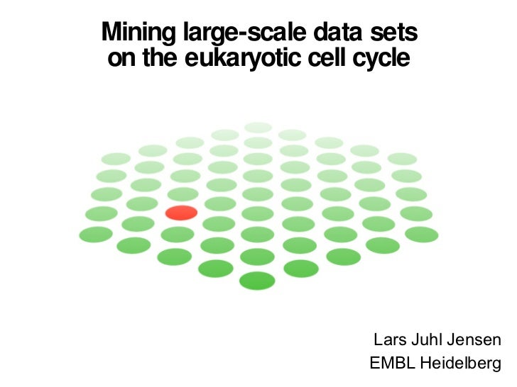 Mining large-scale data sets on the eukaryotic cell cycle