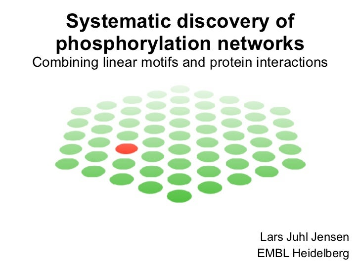 Systematic discovery of phosphorylation networks - Combining linear motifs and protein interactions