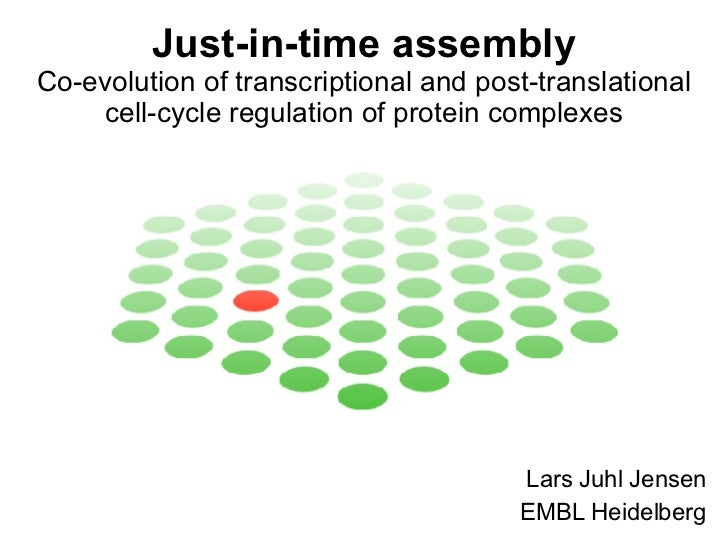 Just-in-time assembly Co-evolution of transcriptional and post-translational cell-cycle regulation of protein complexes La...