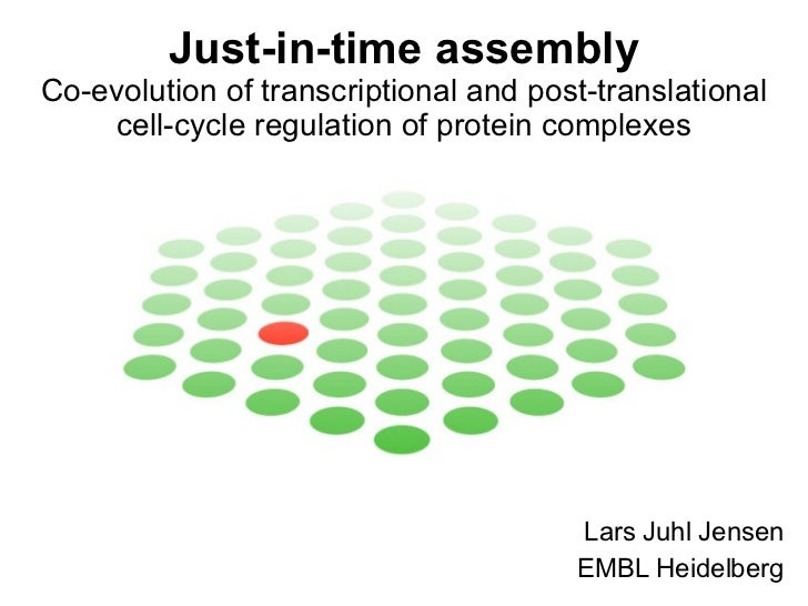 Just-in-time assembly - Co-evolution of transcriptional and post-translational cell-cycle regulation of protein complexes