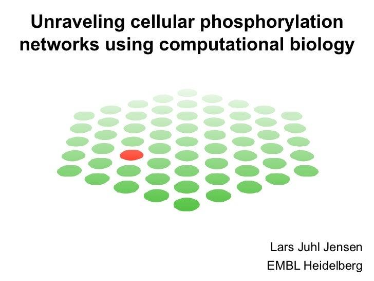 Unraveling cellular phosphorylation networks using computational biology