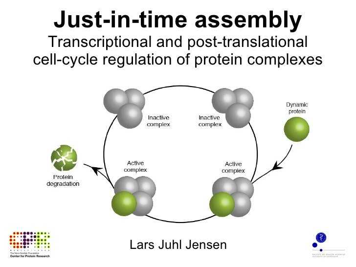 Just-in-time assembly Transcriptional and post-translational cell-cycle regulation of protein complexes Lars Juhl Jensen