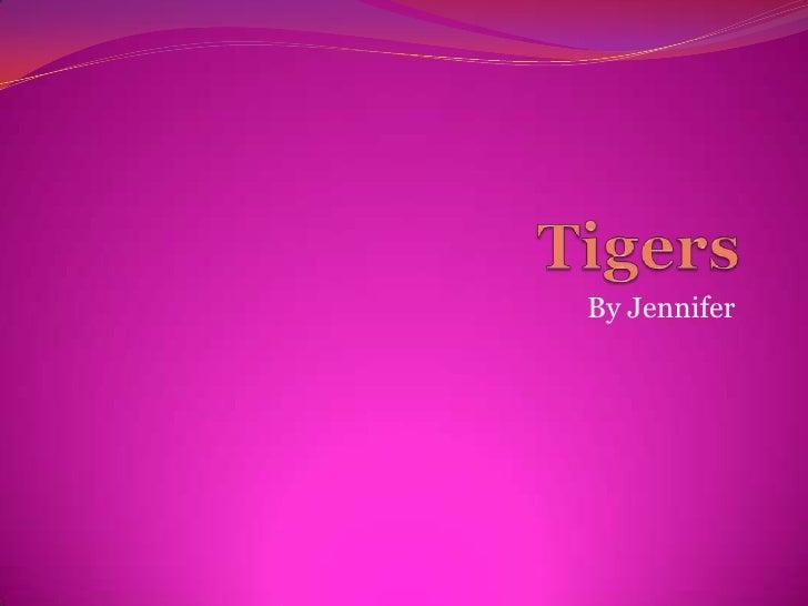 Tigers<br />By Jennifer<br />