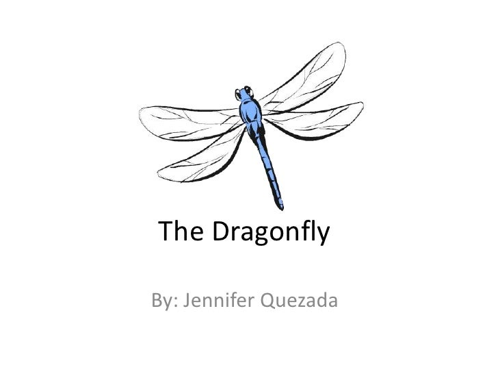 The Dragonfly<br />By: Jennifer Quezada<br />