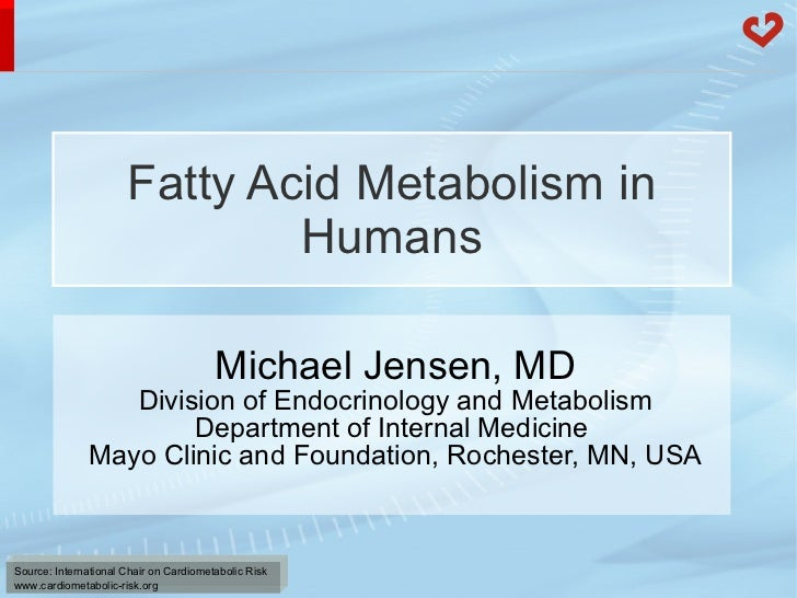 Fatty Acid Metabolism in Humans Michael Jensen, MD Division of Endocrinology and Metabolism Department of Internal Medicin...