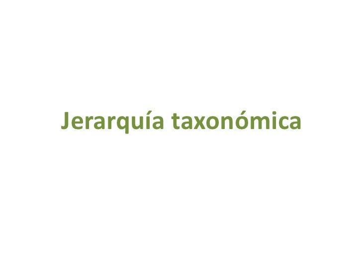 Jerarquía taxonómica<br />