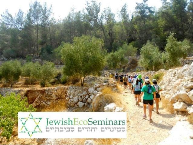 About Jewish Eco Seminars