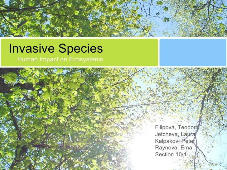 Invasive Species Human Impact on Ecosystems Filipova, Teodora Jetcheva, Laura Kalpakov, Peter Raynova, Ema Section 10/4