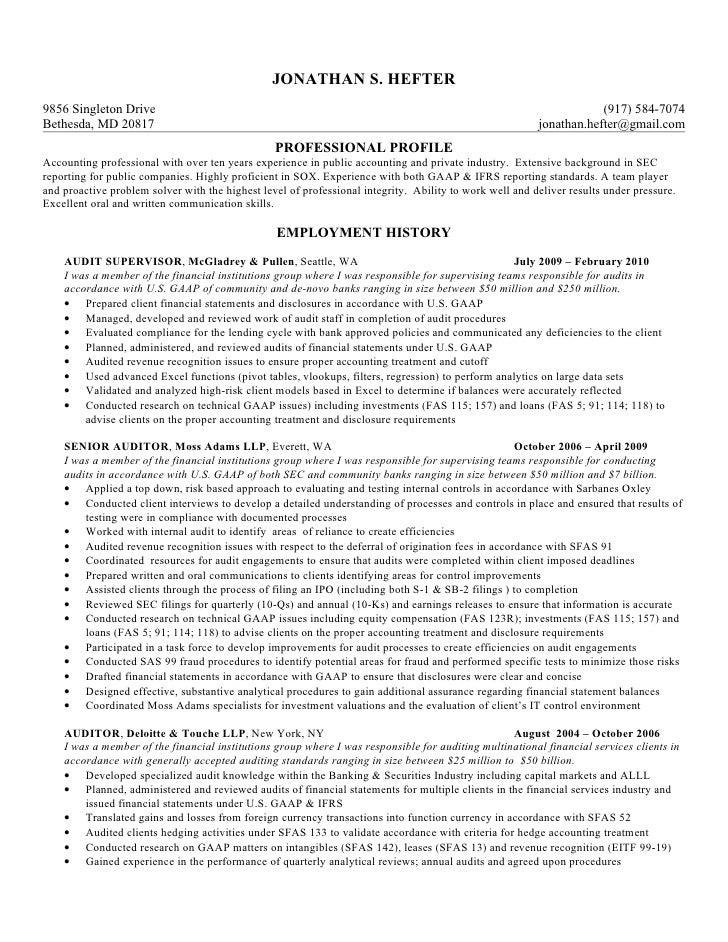 Senior Auditor Resume Template Examples