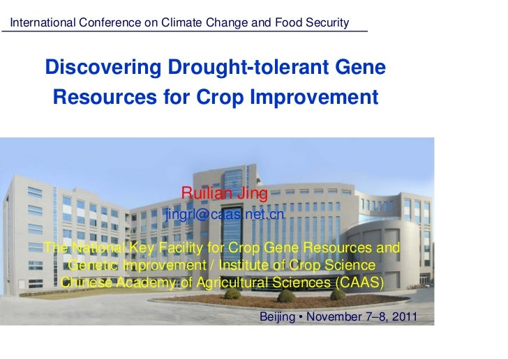Jing ruilian — discovering drought tolerant gene resources for crop improvement