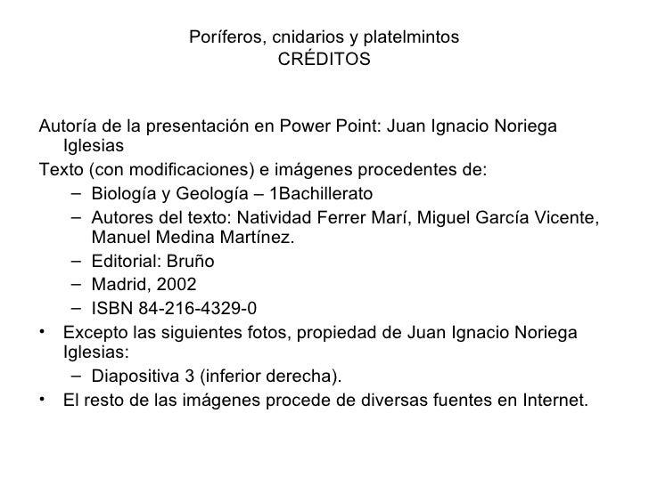 Poríferos, cnidarios y platelmintos                               CRÉDITOS   Autoría de la presentación en Power Point: Ju...