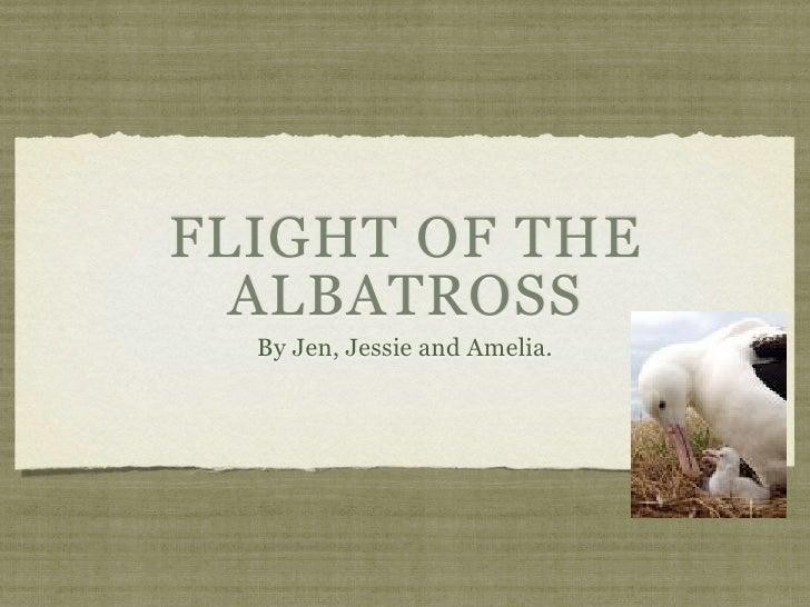 FLIGHT OF THE   ALBATROSS   By Jen, Jessie and Amelia.