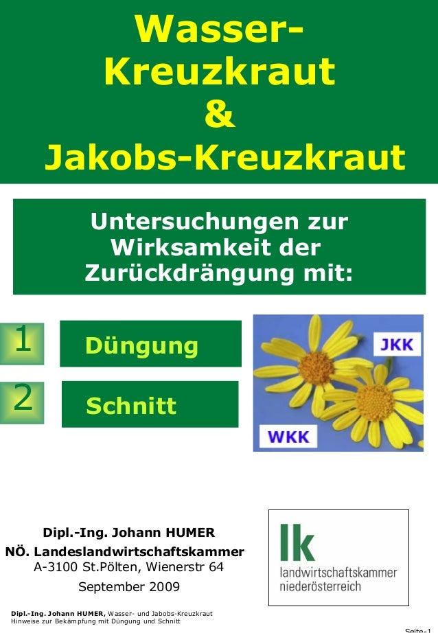 WasserKreuzkraut & Jakobs-Kreuzkraut Untersuchungen zur Wirksamkeit der Zurückdrängung mit:  1  Düngung  2  Schnitt  Dipl....