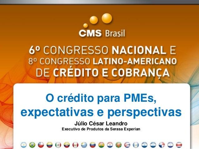 O crédito para PMEs, expectativas e perspectivas Júlio César Leandro Executivo de Produtos da Serasa Experian