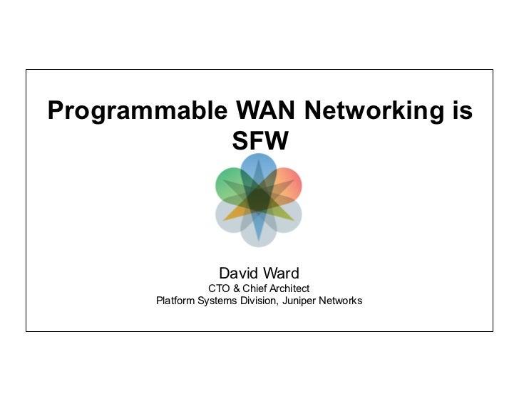 Programmable WAN Networking is SFW (Open Networking Summit version)