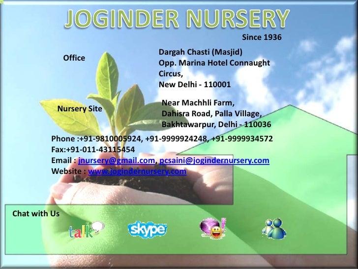 JOGINDER NURSERY<br />Since 1936<br />Dargah Chasti (Masjid)Opp. Marina Hotel Connaught Circus,New Delhi - 110001<br />O...