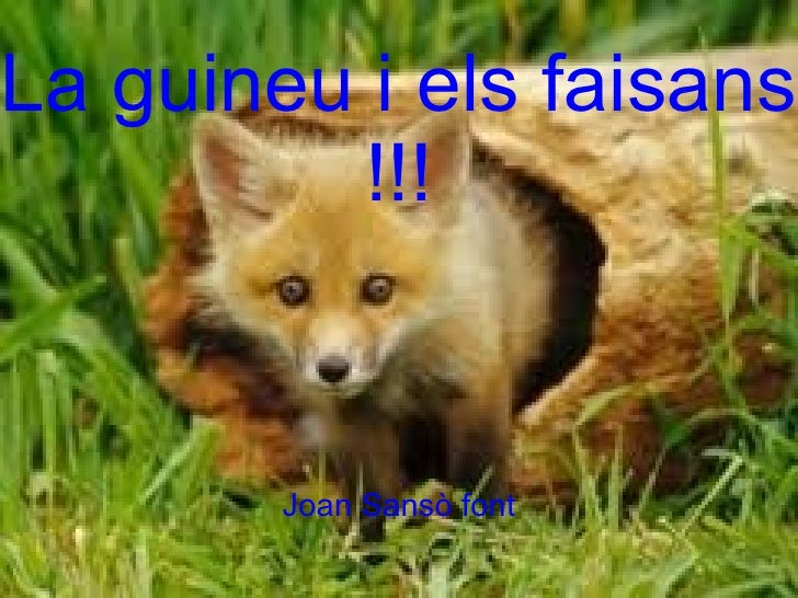 La guineu i els faisans   La guineu i els faisans!!!         !!!          Joan Sansò font