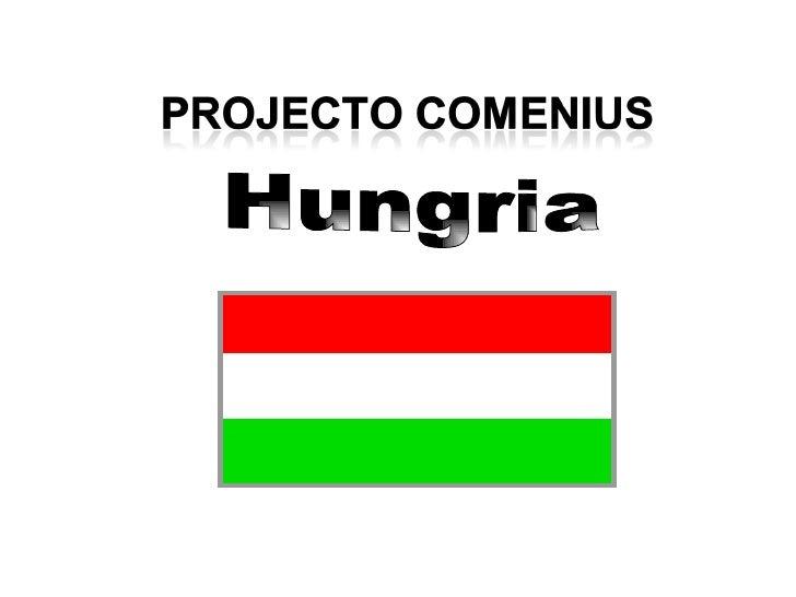 Joao Cardoso E Rui  Hungria