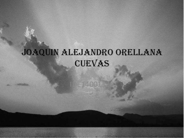 Joaquin Alejandro Orellana Cuevas IDE14001138