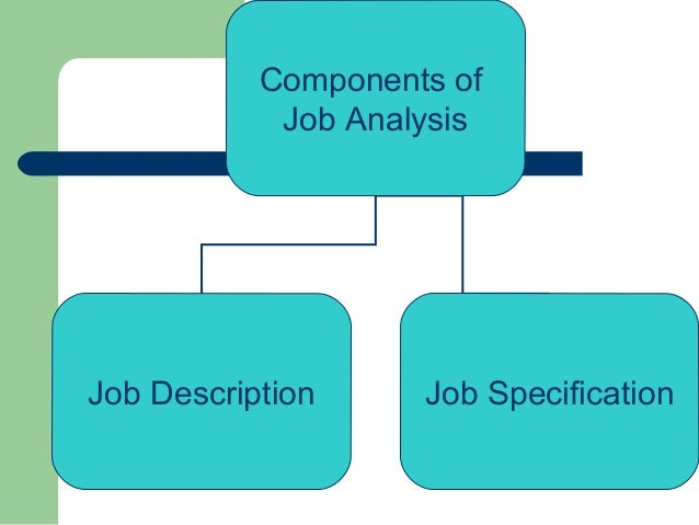 job description and job analysis report essay Job analysis may include: review of occupation duties of the current employees we will write a custom essay sample on any topic analysis of responsibilities and undertakings of the occupation analysis of already available occupation descriptions cardinal concepts: determines.