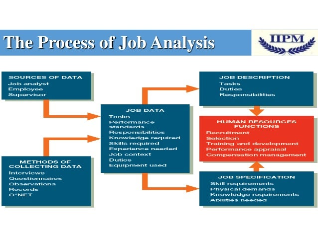 hrm job analysis A job analysis is a step-by-step specification of an employment position's requirements, functions, and procedures just as a seed cannot blossom into a flower unless the ground is properly.