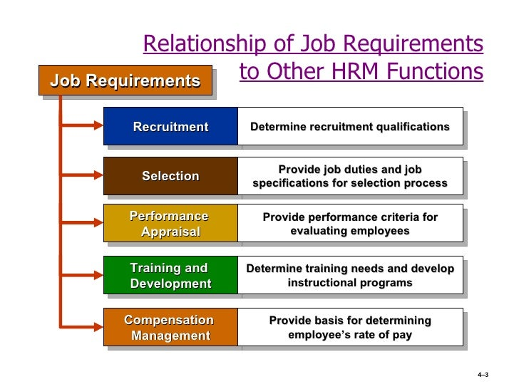 job description and selection criteria hrm This document provides information on the roles of hiring managers and human resources specialists and the finalize position description and job analysis during the application, evaluation, and selection process review applications to determine basic eligibility.