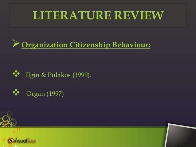 literature review on job satisfaction