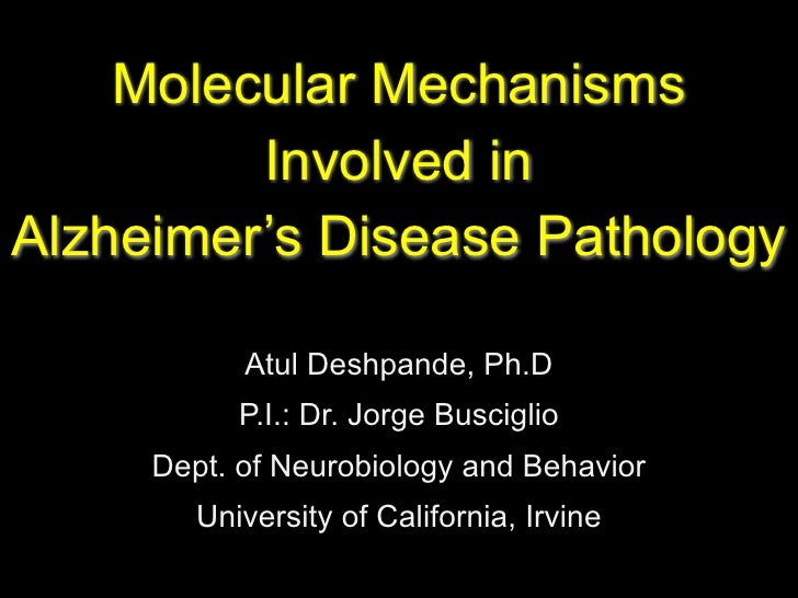 Molecular Mechanisms          Involved in Alzheimer's Disease Pathology             Atul Deshpande, Ph.D            P.I.: ...