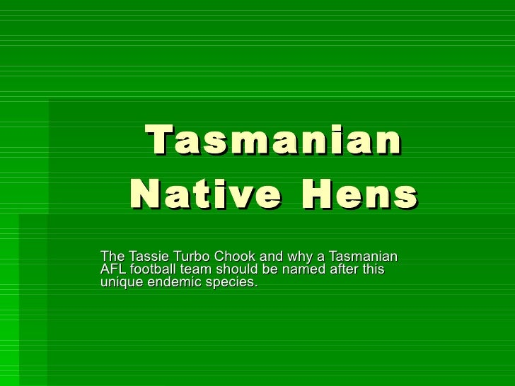Tasmanian Native Hens The Tassie Turbo Chook and why a Tasmanian AFL football team should be named after this unique endem...