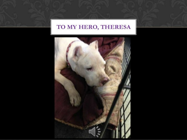 TO MY HERO, THERESA