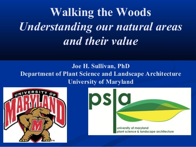 Walking the WoodsUnderstanding our natural areas        and their value                 Joe H. Sullivan, PhDDepartment of ...