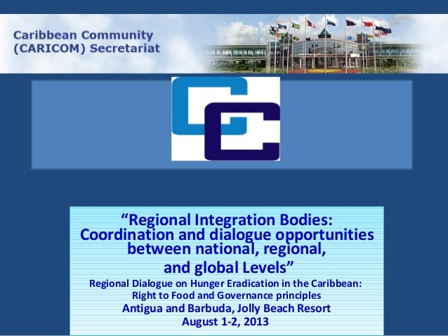 """Regional Integration Bodies: Coordination and dialogue opportunities between national, regional, and global Levels"" Regio..."