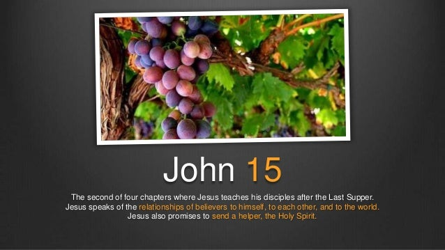 John 15 The second of four chapters where Jesus teaches his disciples after the Last Supper.Jesus speaks of the relationsh...