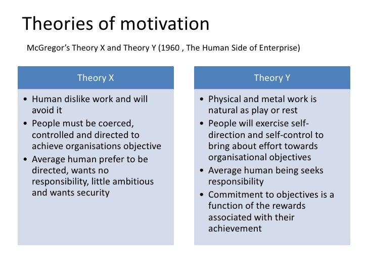 theory x essay