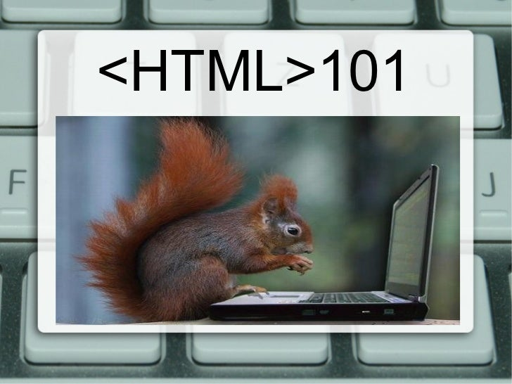 <HTML>101