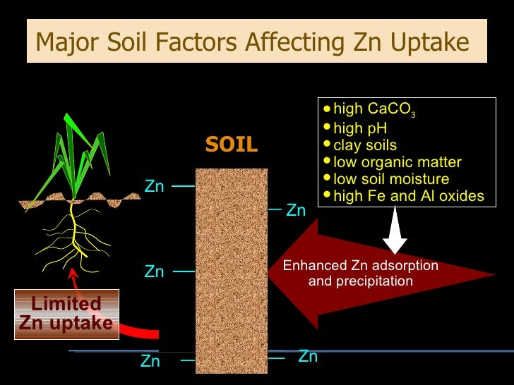 Zinc fertilizer program for Soil factors