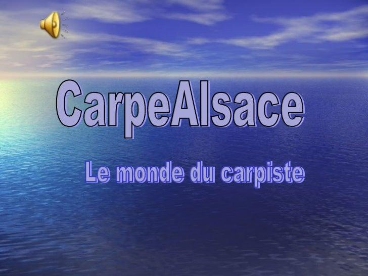 CarpeAlsace Le monde du carpiste