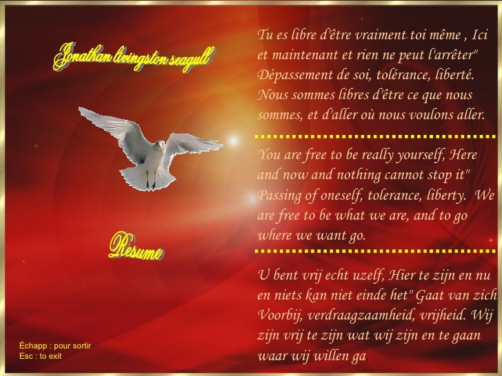 jonathan livingston seagull essay