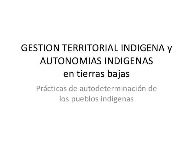 GESTION TERRITORIAL INDIGENA yAUTONOMIAS INDIGENASen tierras bajasPrácticas de autodeterminación delos pueblos indígenas