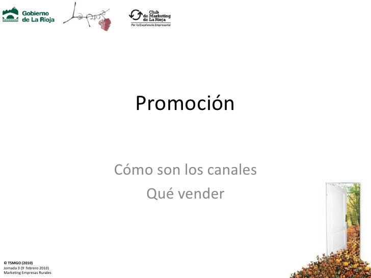 Promoción                               Cómo son los canales                                 Qué vender   © TSMGO (2010) J...