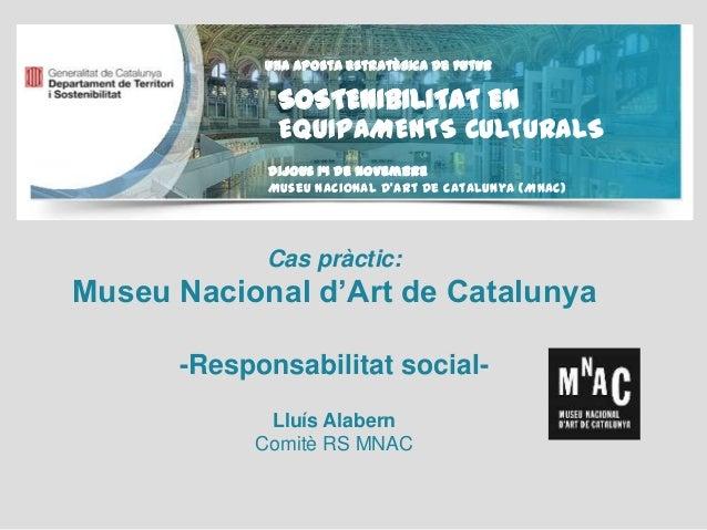 Cas pràctic Museu Nacional d'Art de Catalunya: RSC