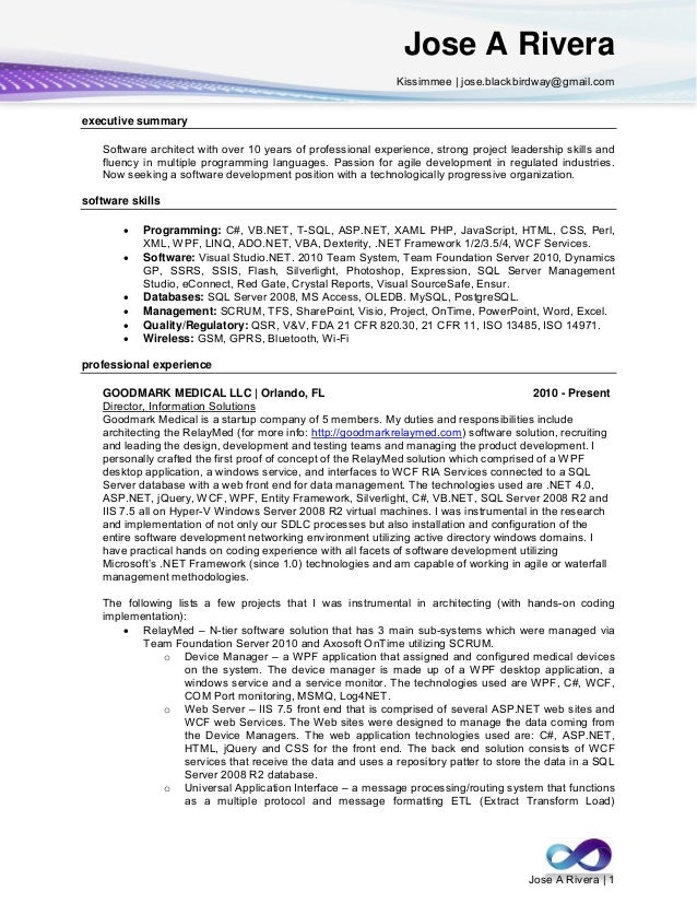 net developer resume summary software engineer resume summary - Resume Summary Software Engineer