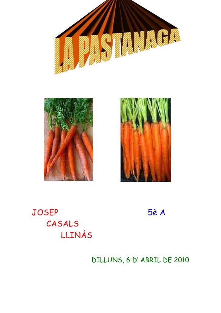 JOSEP                     5è A   CASALS       LLINÀS             DILLUNS, 6 D' ABRIL DE 2010