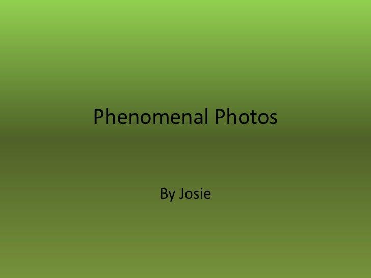 Phenomenal Photos      By Josie