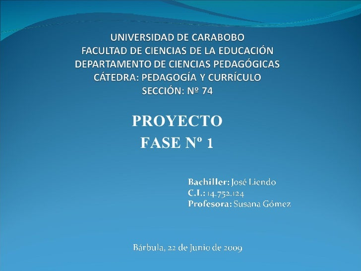 PROYECTO  FASE Nº 1