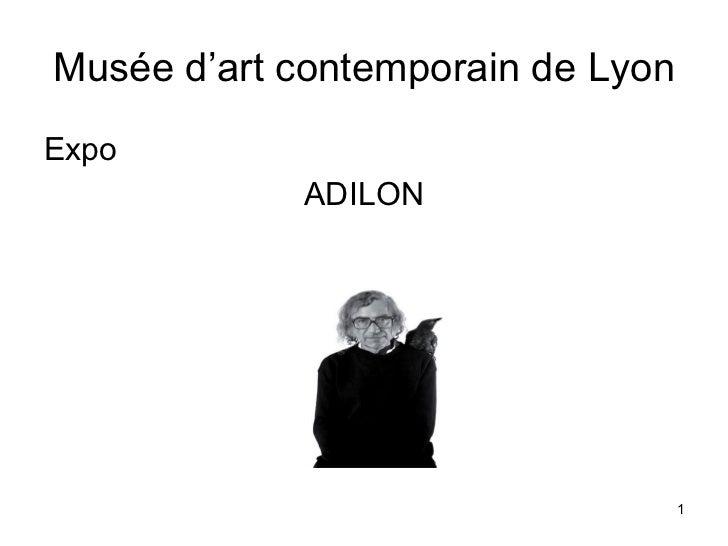 Musée d'art contemporain de Lyon <ul><li>Expo </li></ul><ul><li>ADILON </li></ul>