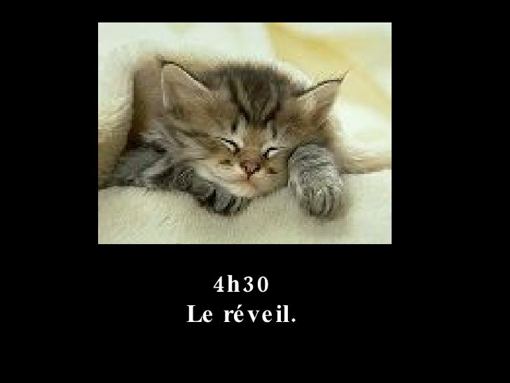 4h30  Le réveil.
