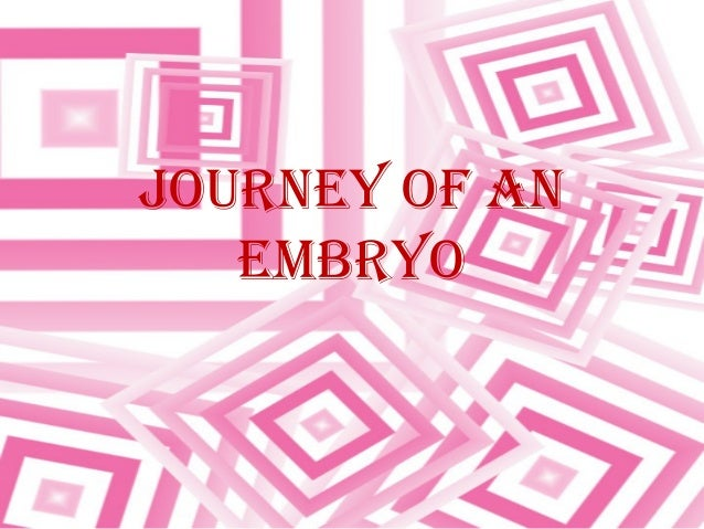JOURNEY OF AN EMBRYO