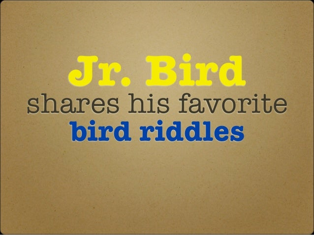 Jr. Birdshares his favorite   bird riddles